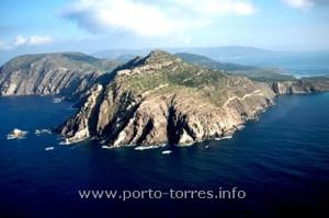 notare l'inclinazione degli strati rocciosi dell'Asinara